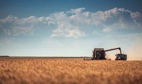 El FEGA asigna 24702 derechos de pago bsico por 297 millones en Extremadura