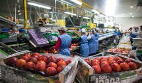 Los precios industriales crecieron en enero un 2 en Extremadura en tasa interanual