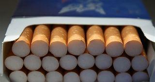 Philip Morris y la UEx  apuetan por la innovación y el emprendimiento