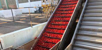 La produccin industrial crece en Extremadura un 2 en junio