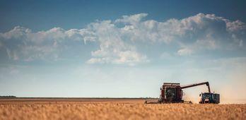 Laudo arbitral resuelve aplicar el SMI a los trabajadores del campo en Extremadura