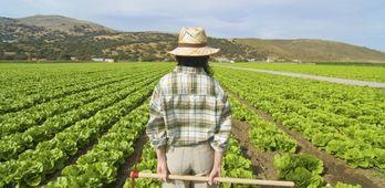 Cientos de trabajadores del campo paran para reclamar la actualizacin de sueldos