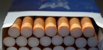 Philip Morris y la UEx  apuetan por la innovacin y el emprendimiento