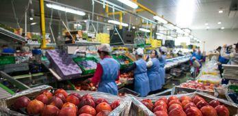 La confianza empresarial sube en Extremadura un 05 durante el segundo trimestre del ao