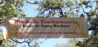 Junta colabora en la celebracin de la XII edicin del Da de la Trashumancia