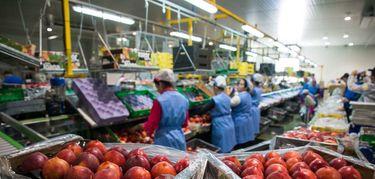 La facturacin de la industria subi en abril un 159 en Extremadura