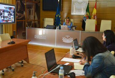 Grupo Europeo sobre Igualdad y Reto Demográfico se readapta ante consecuencias Covid-19