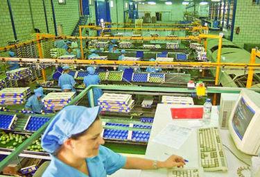 Más del 60 por ciento del desempleo en Extremadura es para la mujer
