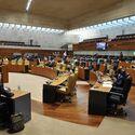 Cermi celebra aprobacin Asamblea medidas en materia violencia a mujeres con discapacidad