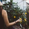 Celebracin de la jornada Mujeres rurales motor de desarrollo en Extremadura