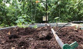 Ayudas para que explotaciones agrarias implanten sistema riego uso eficiente aguaenerga