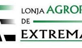 Florencio Torres Lagar se convierte en presidente de la Lonja Agropecuaria de Extremadura
