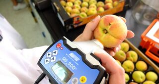 Ayudas para facilitar la innovación en lo agroalimentario