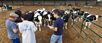 Una oportunidad para jvenes y mujeres rurales las cooperativas agroalimentarias