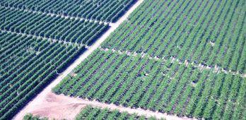 Desarrollo Rural resuelve tres ayudas ms para la mejora de la eficiencia energtica