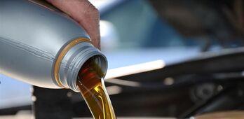 UPAUCE alerta de la gran especulacin que hay en la campaa del aceite