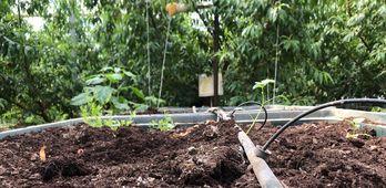 Desarrollo Rural asegura que cumplimiento del PDR es muy por encima de lo establecido