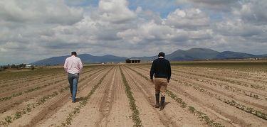 APAG Extremadura Asaja acusa a Delegacin Gobierno de intentar amedrentar a agricultores