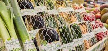 El presidente de Alemania conocer una explotacin de fruta ecolgica en Extremadura