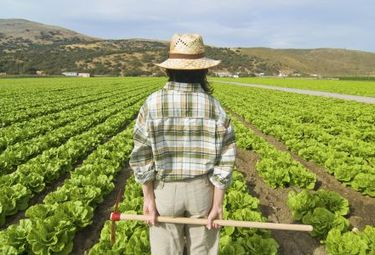 Fademur Extremadura impulsa la incorporación y mantenimiento de mujeres en mercado laboral