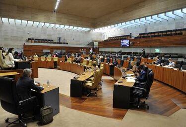 Cermi celebra aprobación Asamblea medidas en materia violencia a mujeres con discapacidad