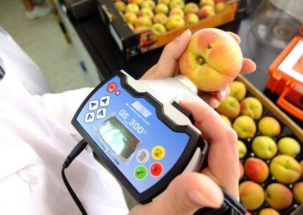 Ayudas para facilitar la innovacin en lo agroalimentario