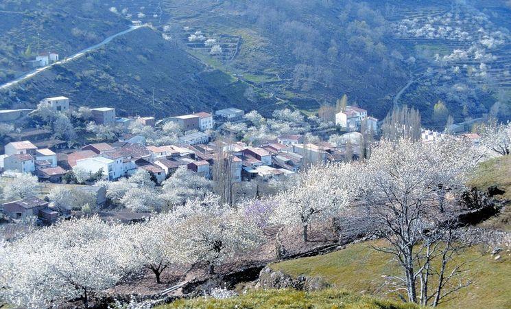 turismo extremadura valle del jerte